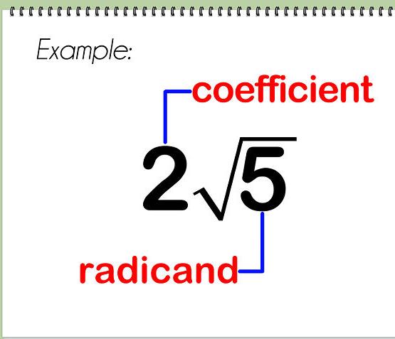 Sandy hook square root math radicals
