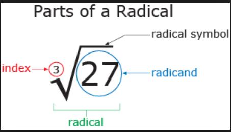 sandy hook radical